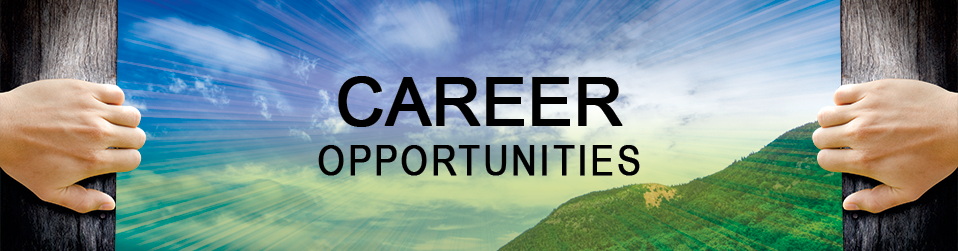 Look out for career opportunites at EmpoweringCPO | top procurement outsourcing companies | procurement consulting company