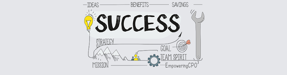 EmpoweringCPO success stories | procurement consulting services | procurement business intelligence | procurement market intelligence